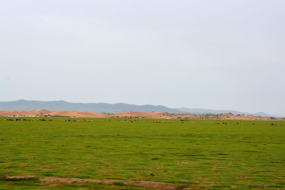 160706-73-mongol-els