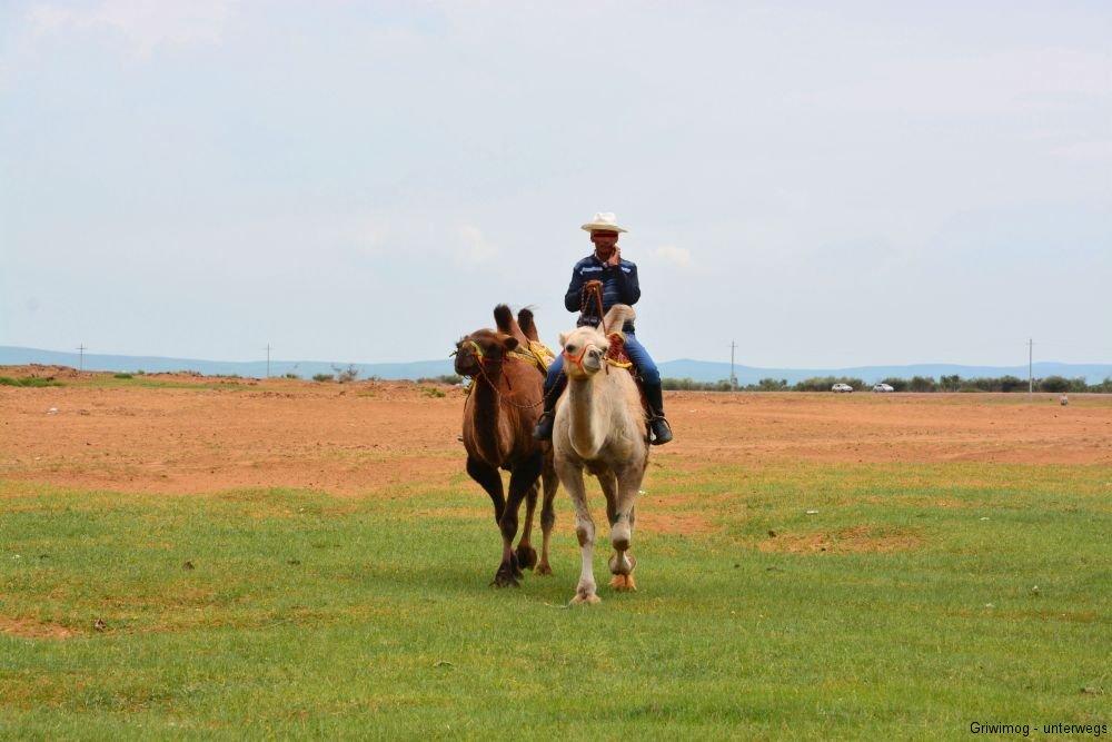 160706-81-mongol-els