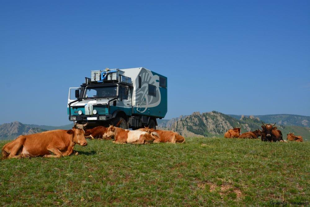 160715-4-camping-terelj-park