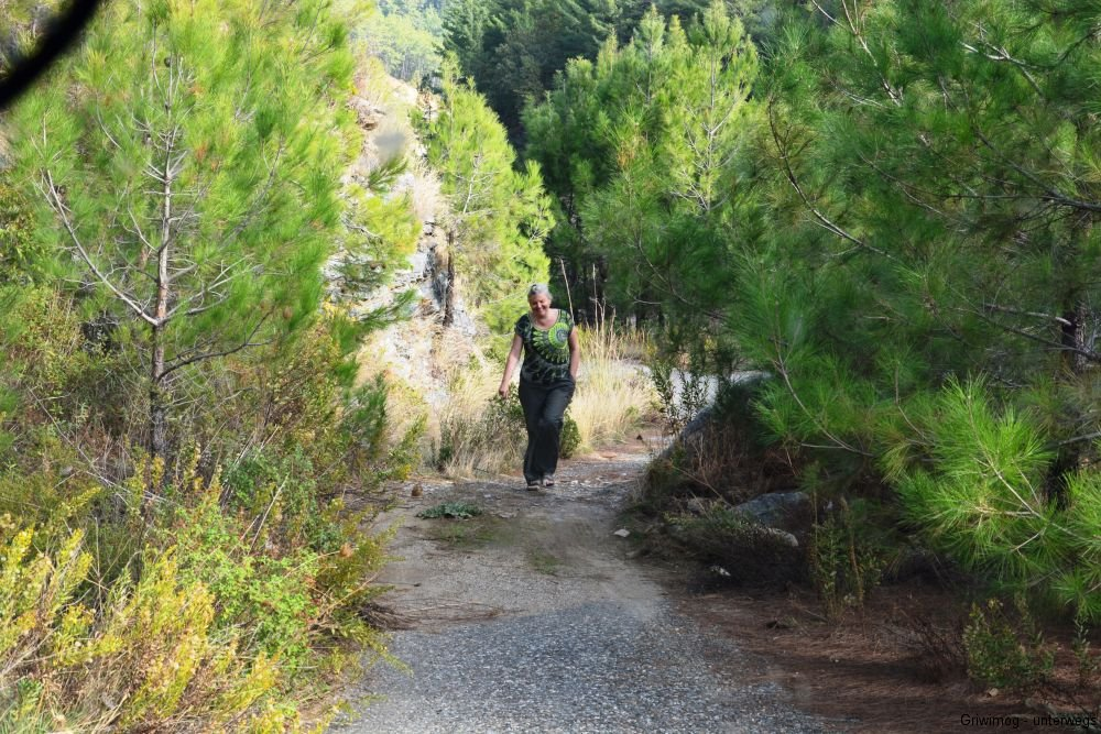 161113-21-dimcay-bei-alanya-off-road