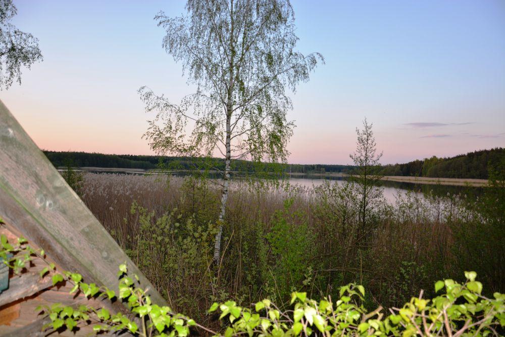 160507 (23) Camping Pieczarki